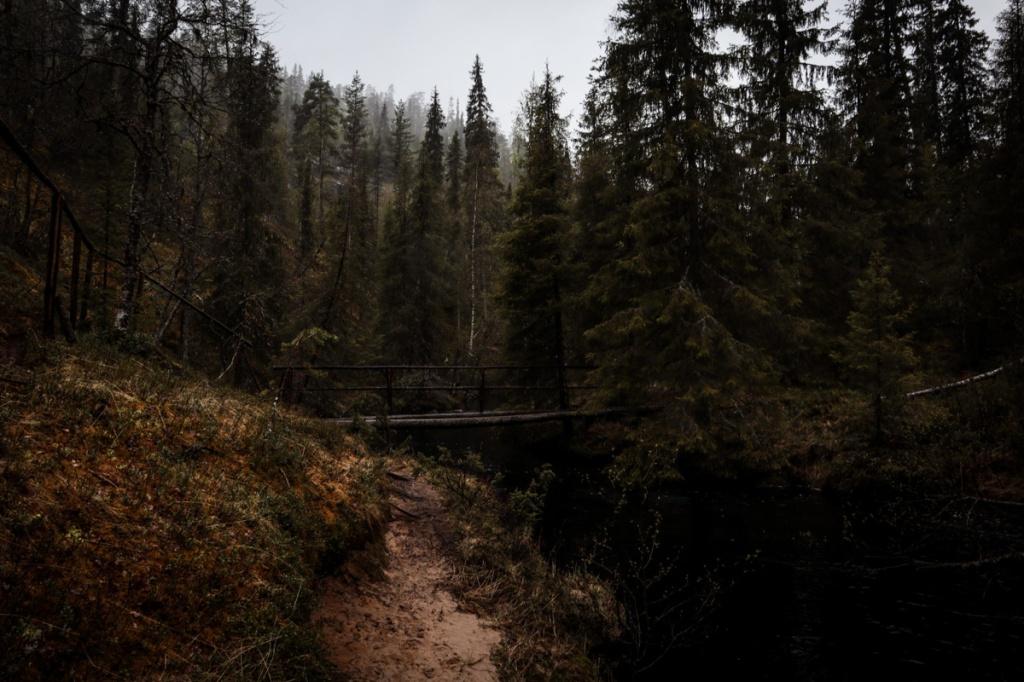 Korojoki ja silta