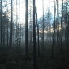 Jännittävä kesäinen videoprojekti alkaa – Uusi tubesarja Suomalaisesta kansanuskosta!